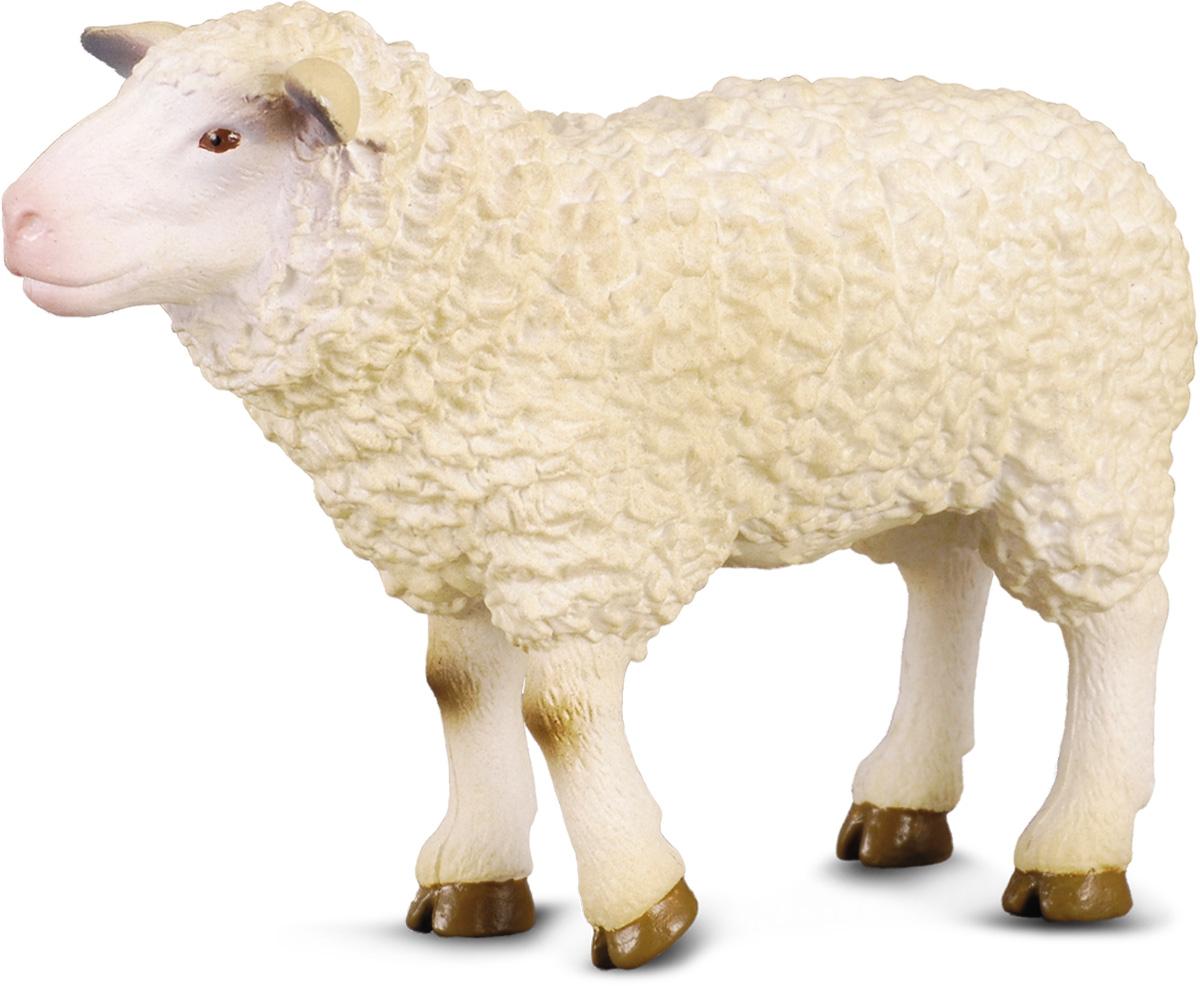 Ура отпуске, картинки овечек