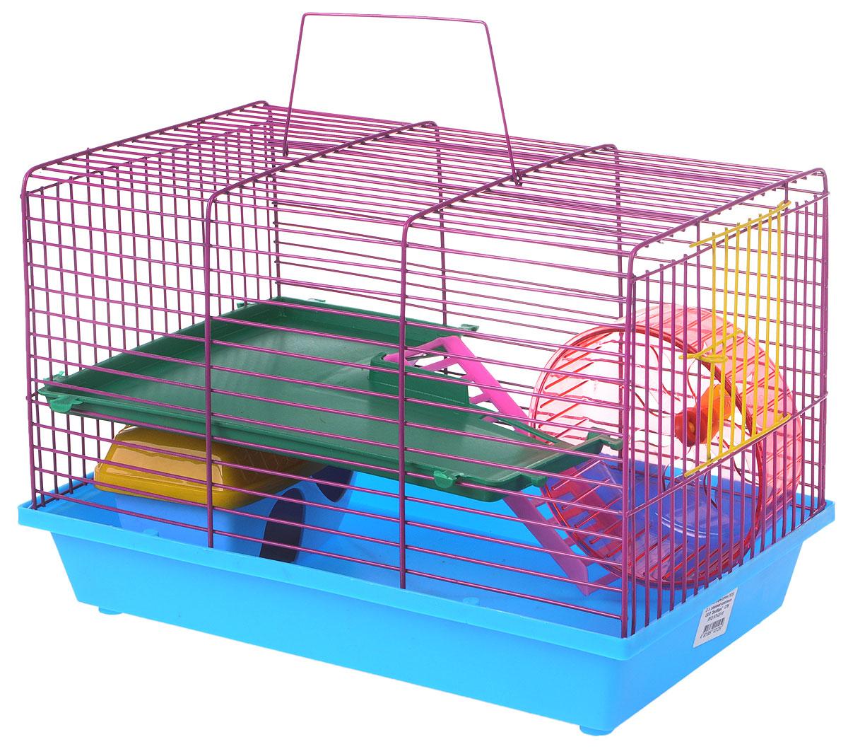 Развлечения для морских свинок Морские свинки 36